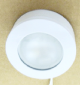 Small Downlight 12V Halogen